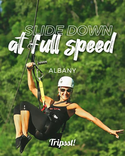 Woman sliding on a zip line through the tops of green trees on a sunny day