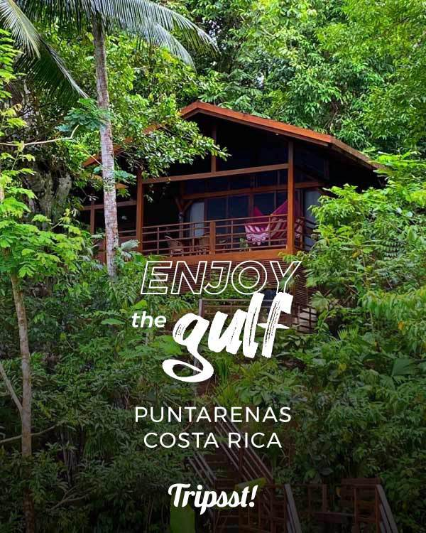 Wooden cabin surrounds from the Golf Nature