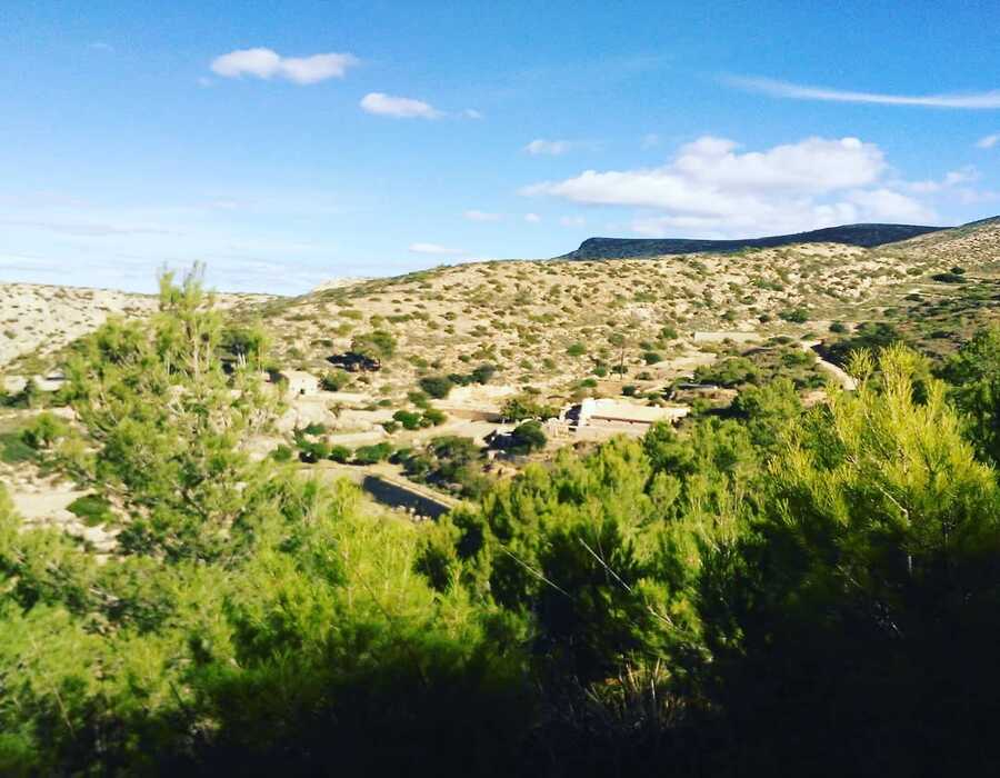 A dessert mountain with shrubs in Sant Elm