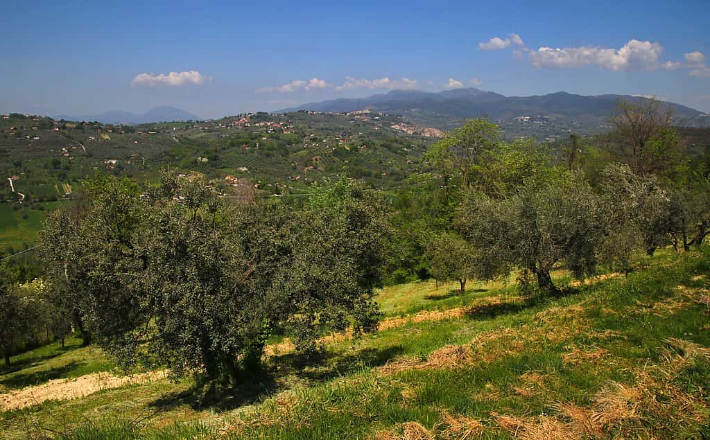 Panoramic view of the rural and green landscapes of the Province of Rieti