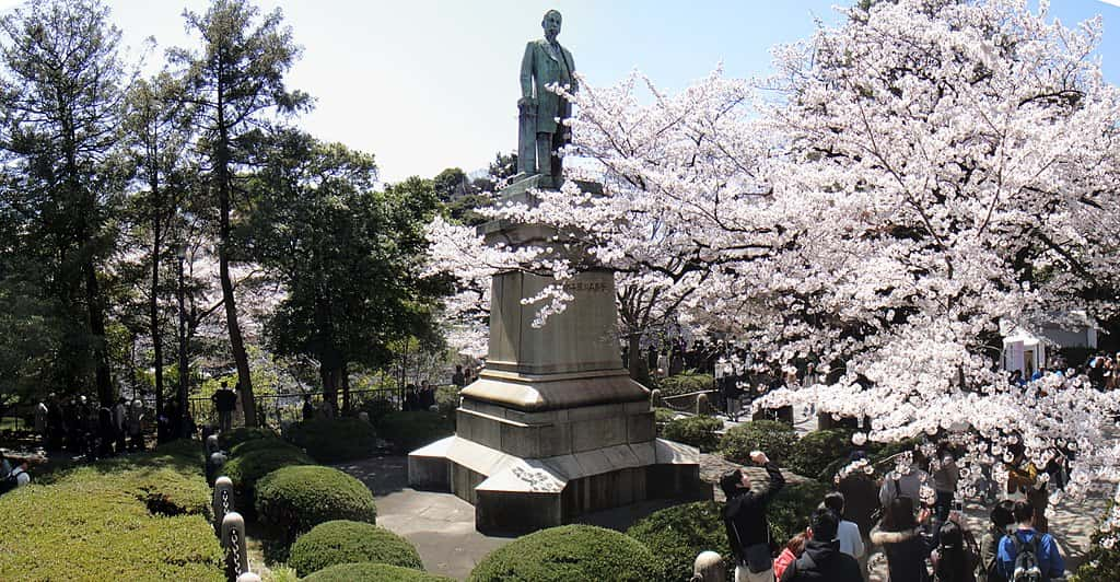 Cherry blossom tree next to a statue in an urban park