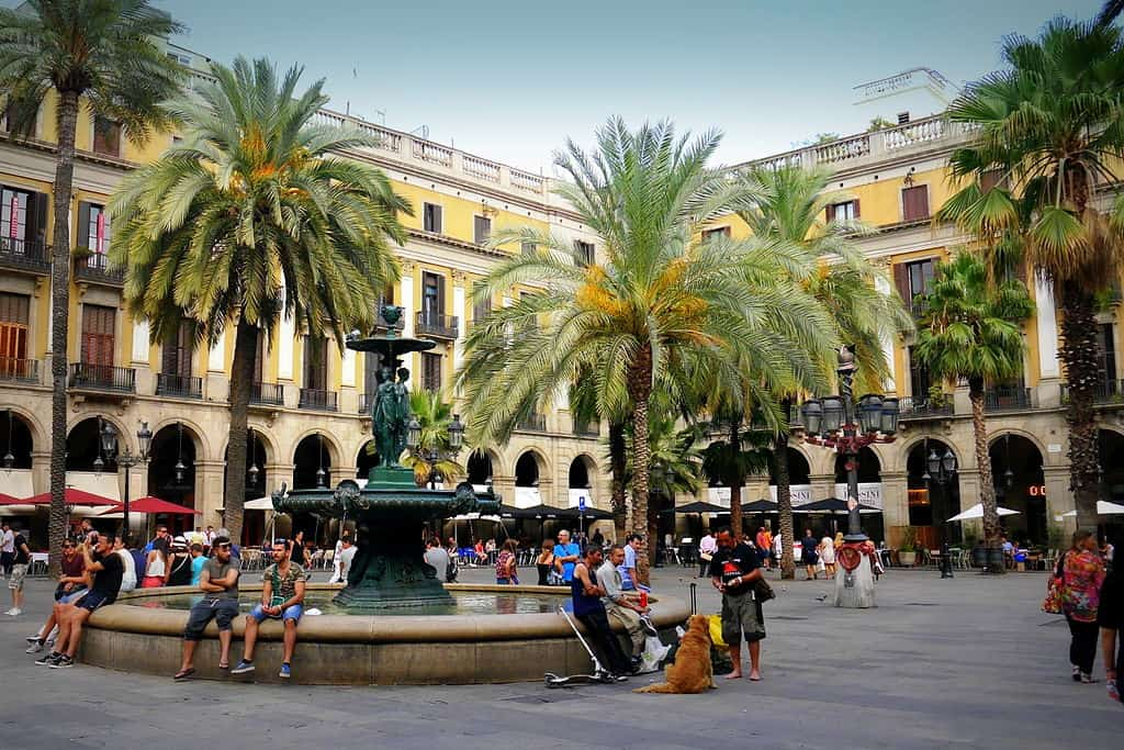 Palm trees surround an open square with a fountain