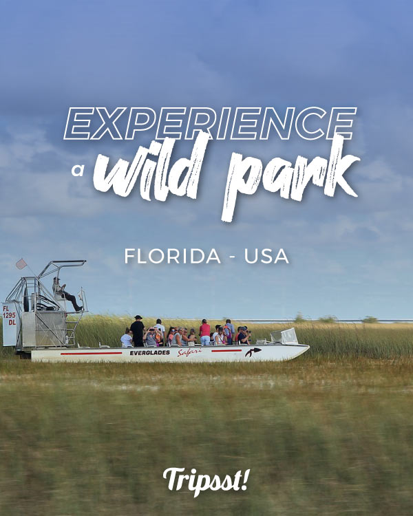 People on an airboat