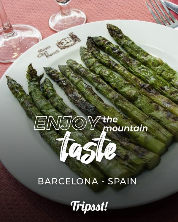 Roasted asparagus served in a white platter