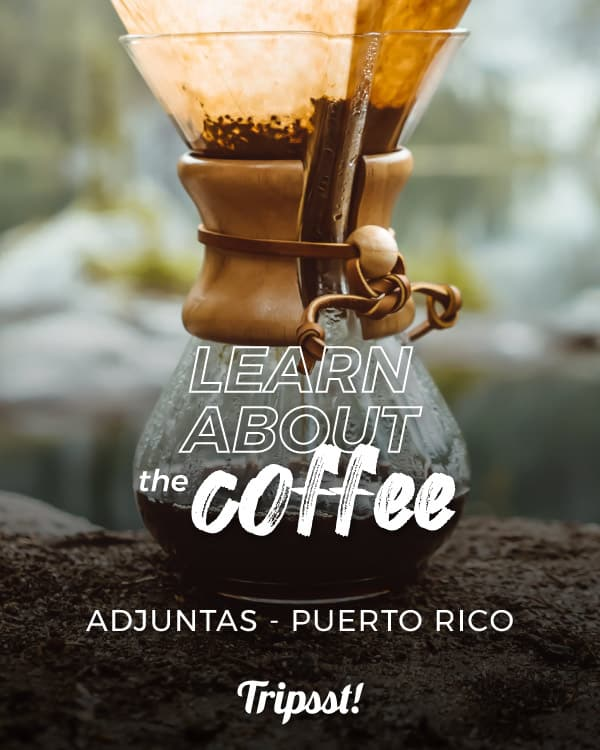 Drink a pure and natural coffee